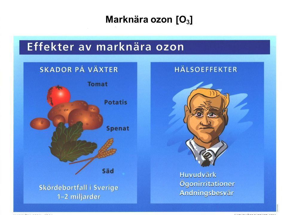Marknära ozon [O3]